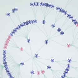 Schematic representation of data trees as bubbles in circles